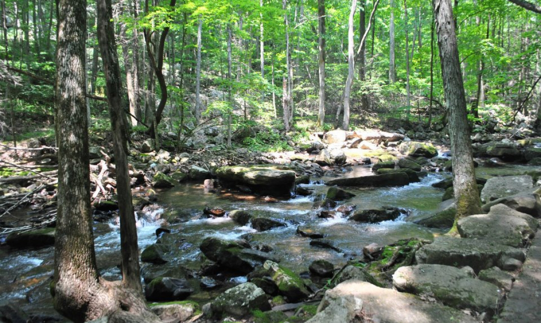 Little Stony Creek